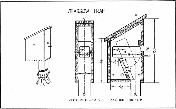 House sparrow trap design home design and style Trap house plans